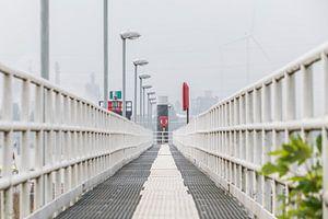 Leidende lijnen in Antwerpse Haven van Wouter Pinkhof