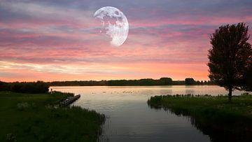 Maan stilleven bij de Noorderplassen von Nicky`s Prints