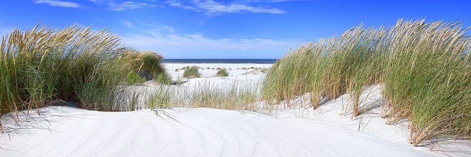 Perfecte strand dag van Joris Beudel