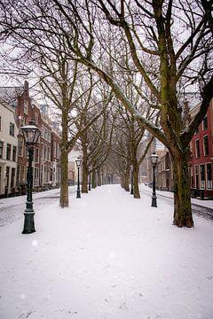 Sneeuw heeft Leiden ingepakt van Franck Doho