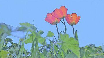 Rode Tulpen in de Zon onder een Blauwe Hemel - Schilderij