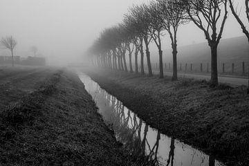 Dijk in de mist van Joerg Keller