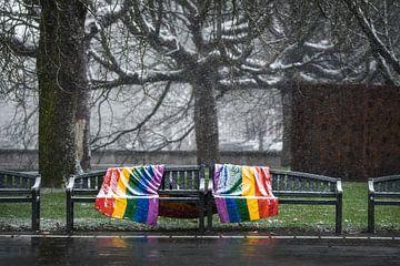 Park Valkenberg (Breda) met regenboogbank