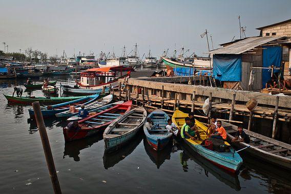 Slum Harbour