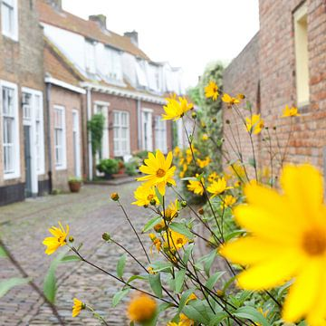 Gele bloemen in Veere von Pieter Wolthoorn