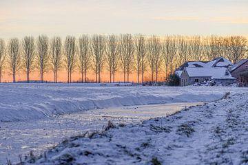 winters platteland van Tania Perneel