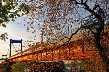 Friedrich-Ebert-Brücke in Duisburg (7-39832) von Franz Walter