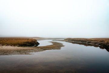 Natuurpark de Slufter gehuld in de mist V | Een reis over Waddeneiland Texel von Roos Maryne - Natuur fotografie