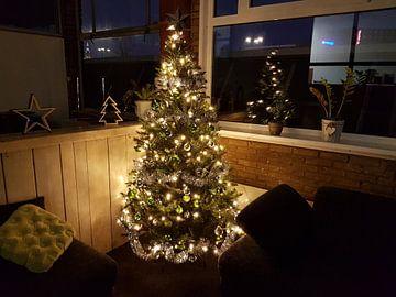 Kerstboom fabriek van Ramon van Rootselaar