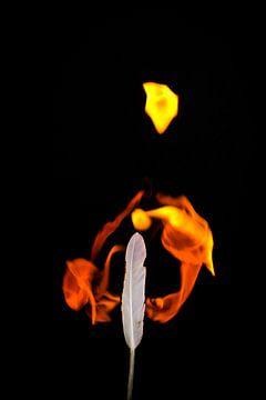 Feuer und Flamme #2 von pixxelmixx