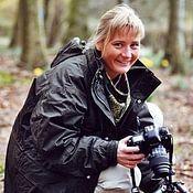 Diane Jordan avatar