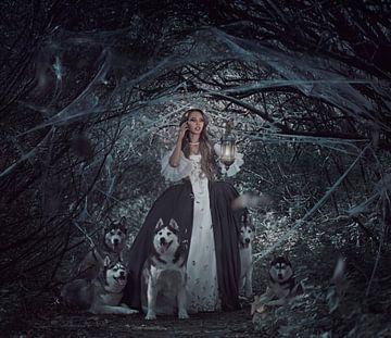 Prinses in het bos van Cindy Stegeman