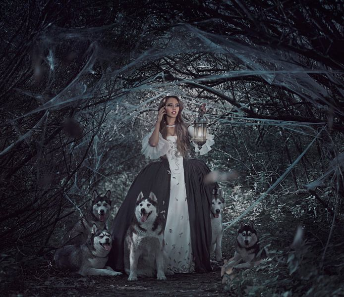 Prinses in het bos von Cindy Stegeman