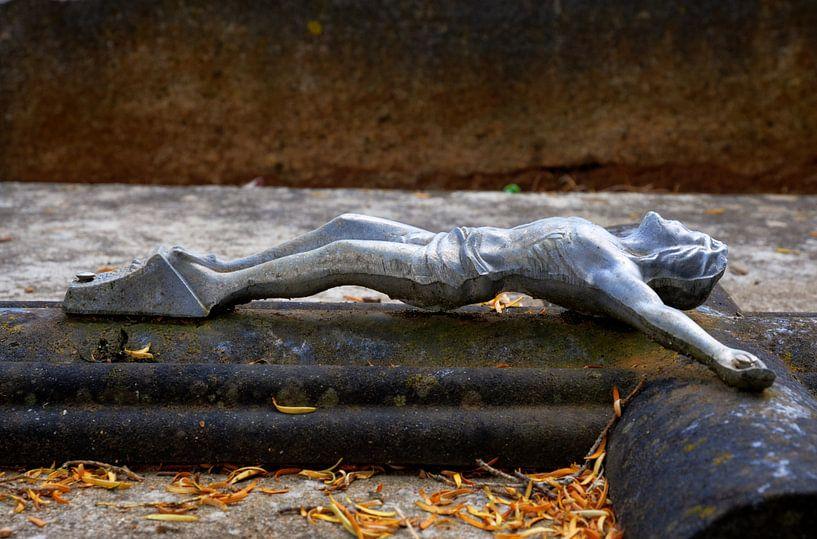 Fallen... van Hans Kool