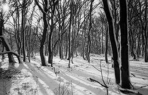 Schaduw in de sneeuw van Maaike van Stratum