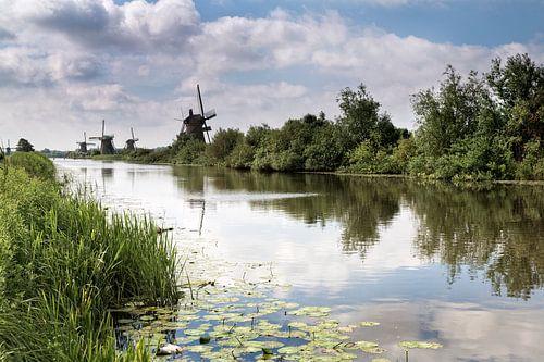 Molens langs Kinderdijk