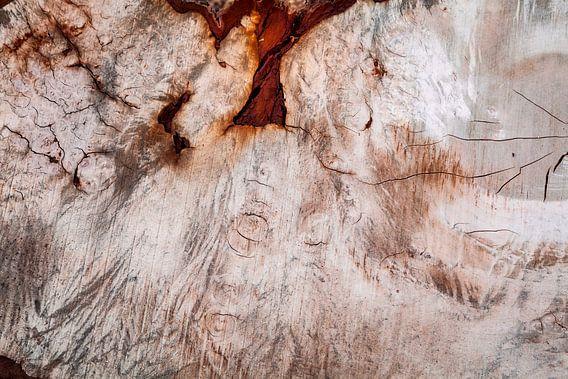 hout (figuren) van Eugene Winthagen