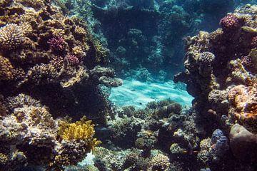 Straat tussen het koraal van