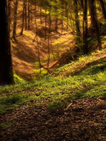 bosland van emiel schalck