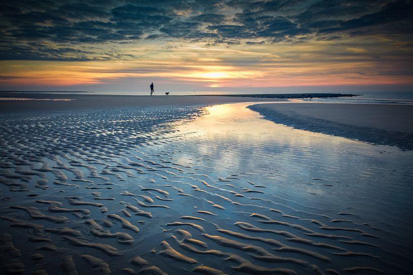 Laufen mit Hund am Strand von eric van der eijk