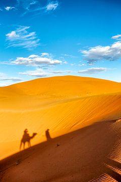 Kameel met gids in sahara sur