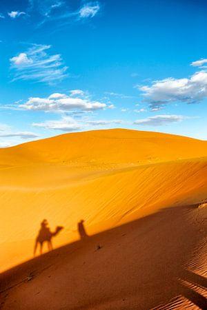 Kameel met gids in sahara