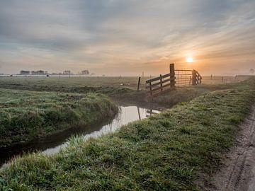 Morgen Nebel bei Castricum, Holland von Philippos Kloukas