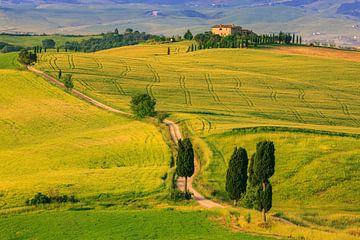 Agriturismo Podere Terrapille, Val d'Orcia, Toscane, Italië van Henk Meijer Photography