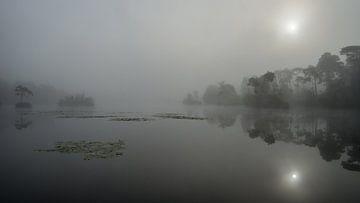 Mistige zonsopkomst van Douwe Bergsma