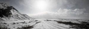 Panorama Thingvellir - IJsland van
