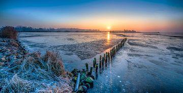winter von Reint van Wijk
