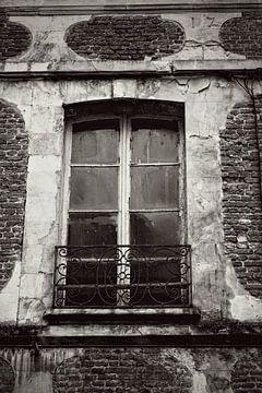 Fenster von Betty Heideman