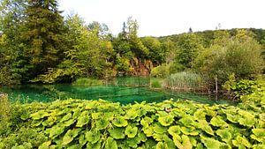 Plitvice meren Kroatie, natuur