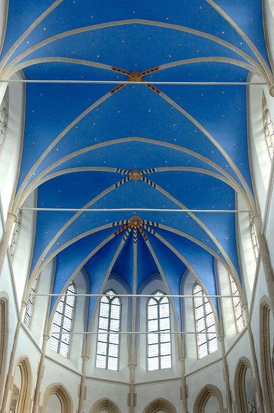 Mariablauw kerkdak, Martinikerk Groningen van Wim van der Ende