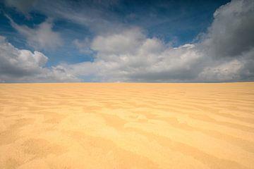 Sanddüne im Aekerzand von Gerry van Roosmalen