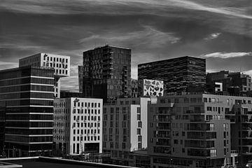 Skyline Oslo van Mirjam Van Houten