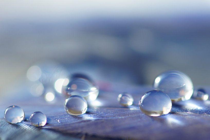 Blue Lagoon van Carla Mesken-Dijkhoff