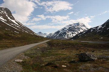 Eine Straße durch die Natur ins Unbekannte von Kim van der Lee