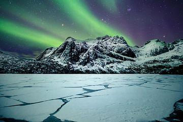 Nordlicht am Storvatnet auf den Lofoten (Norwegen)