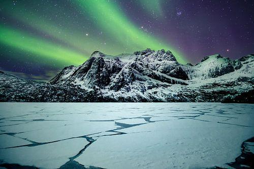 Noorderlicht bij Storvatnet Lofoten (Noorwegen)