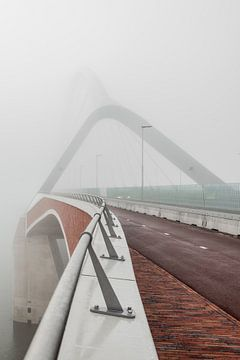 De Oversteek in mist van eusphotography