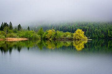 Mistige ochtend in Slovenië van Gijs Rijsdijk