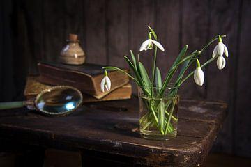 Schneeglöckchen und einige alte Gegenstände auf einem alten Hocker vor einer dunklen, rustikalen Hol von Maren Winter