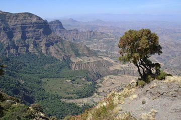 Simien-Gebirge, Äthiopien von Harold de Groot