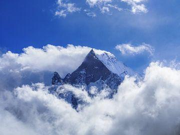 Nepal - Annapurna Track Himalayas - Een van de hoogste van Rik Pijnenburg