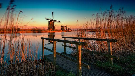 Kinderdijk Holland van Michael van der Burg
