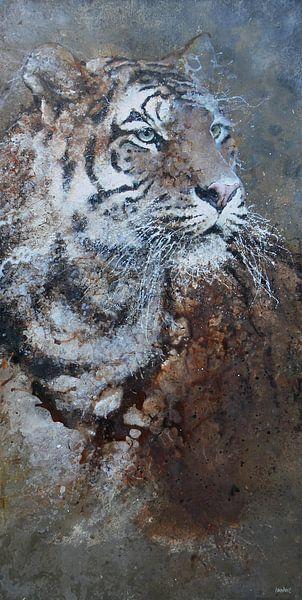 Tiger von Peter van Loenhout