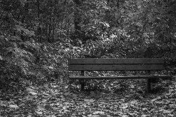 eenzaam bankje in het bos, zwart wit von Wilma Meurs