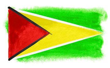 Symbolische nationale vlag van Guyana van Achim Prill