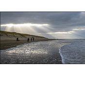 Texel eXperience photo de profil